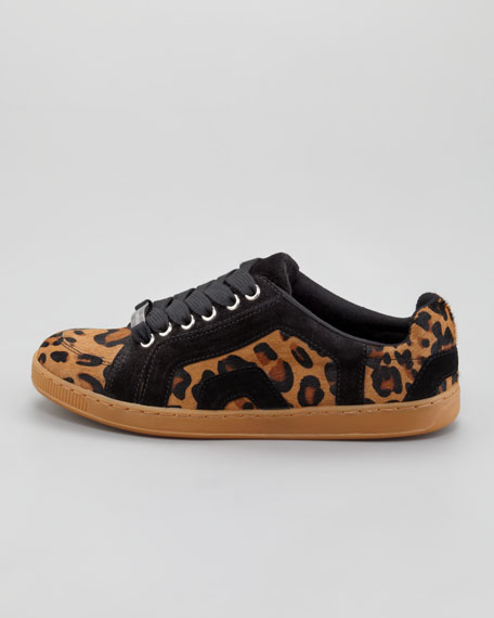 Darien Leopard-Print Calf Hair Sneaker