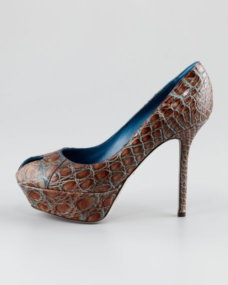 Cachet Crocodile Pump