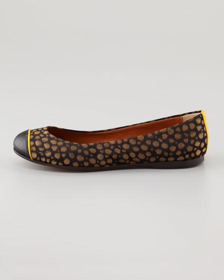 Cap-Toe Ballerina Flat, Black/Beige
