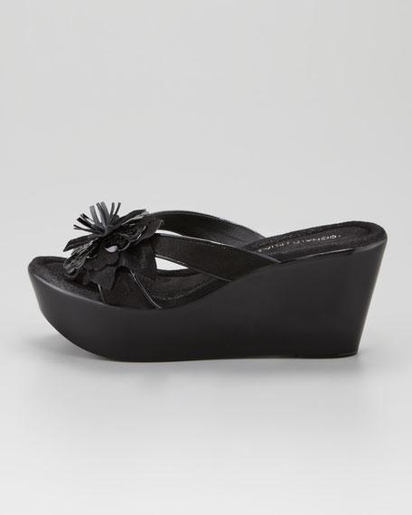 Shann Shimmery Floral Wedge Sandal, Black