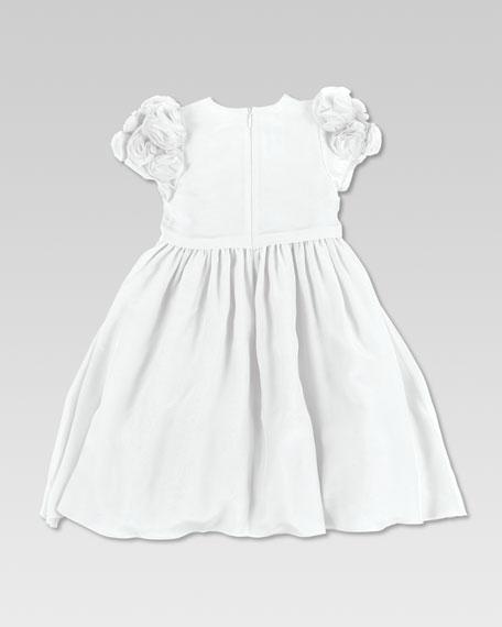 Silk Voile Chiffon Dress