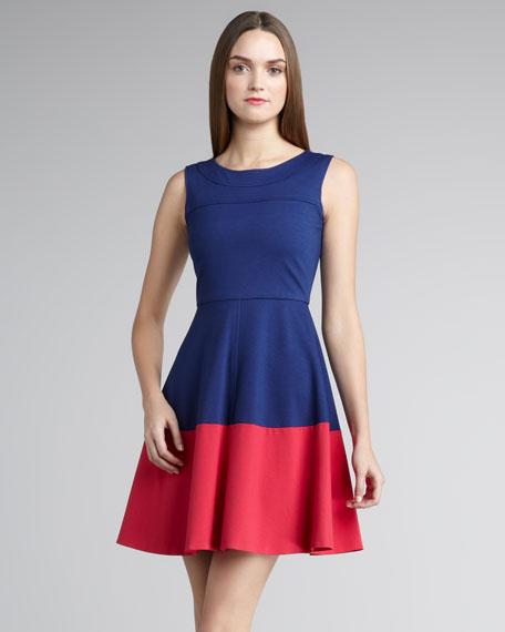 Kelsey Colorblock Dress