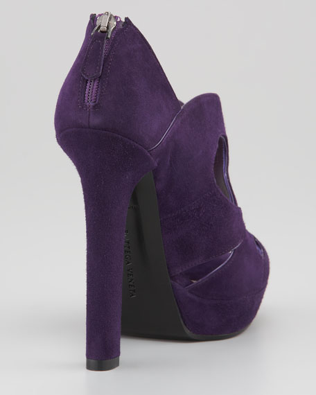 Butterfly-Cutout Pump
