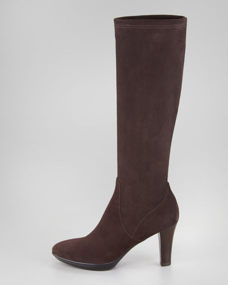 Rhumba Stretch Suede Tall Boot