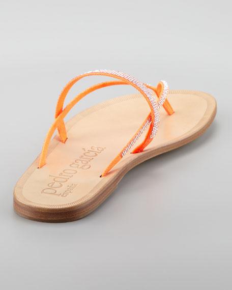 Zuriel Crystal Flat Thong Sandal, Orange