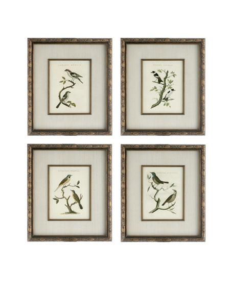 """""""Perched Bird"""" Prints"""