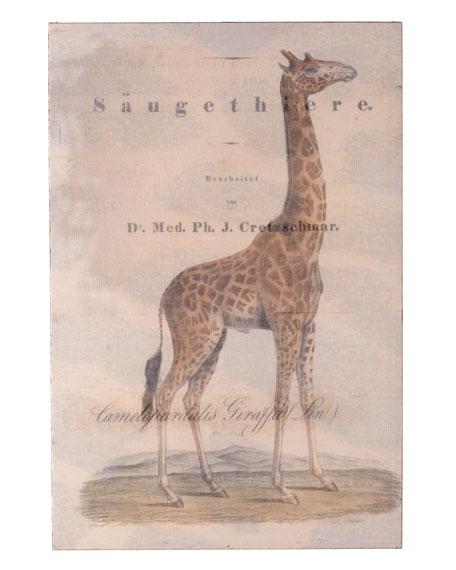 Giraffe Panel