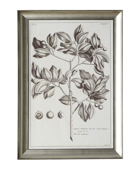 Sepia Foliage Prints