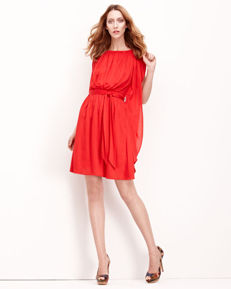 Lucinda Chiffon Dress