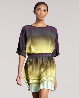 Etro Pleated Ombre Skirt