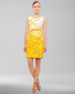 Akris Reed-Print Double-Faced Dress, Pollen