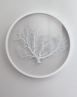 Karen Robertson Collection Round White Sea Fan Wall Decor