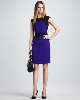 Milly Ella Belted Colorblock Dress