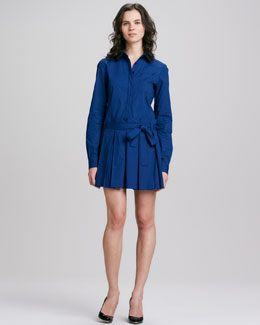 Diane von Furstenberg Montana Shirtwaist Dress