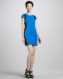 Diane von Furstenberg Pele Leather-Panel Dress