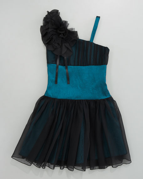 Taffeta and Chiffon Dress, Sizes 8-10