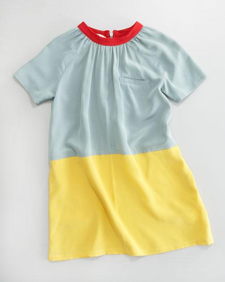 Colorblock Shift Dress, Sizes 2-6