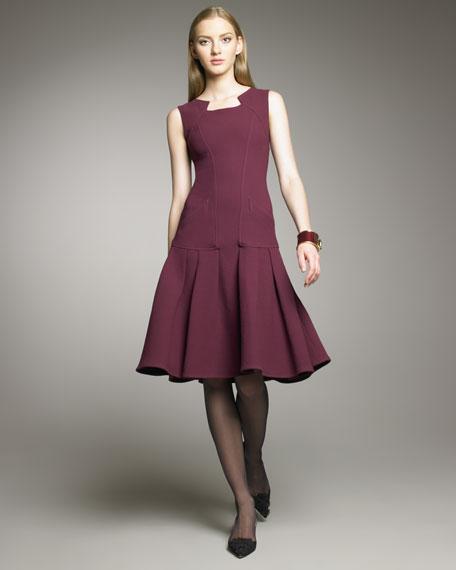Seamed Drop-Waist Dress