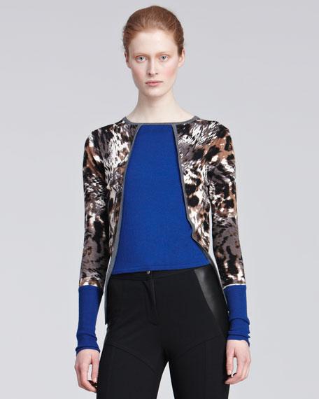 Long-Sleeve Leopard-Print Top