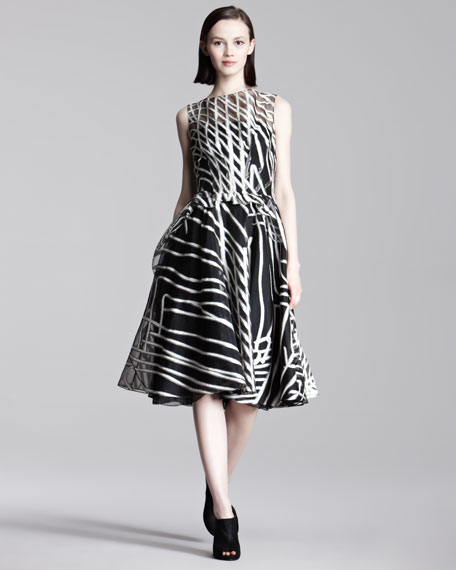 Labyrinth Organza Dress