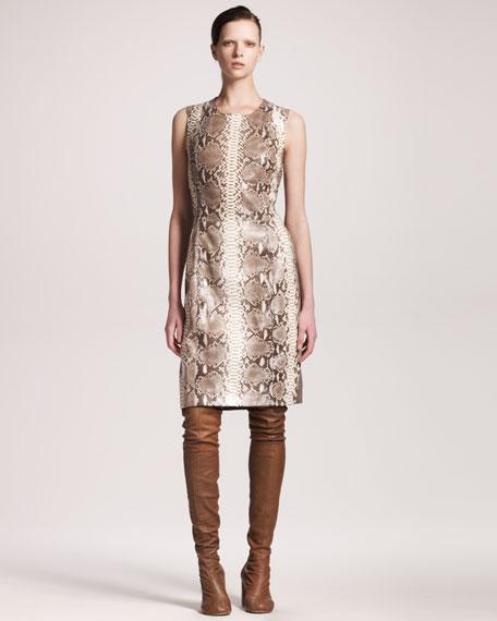 Python Knit Shift Dress