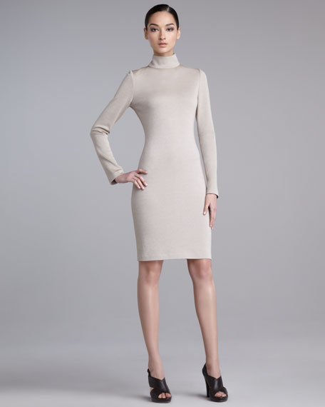 Milano Fitted Turtleneck Dress