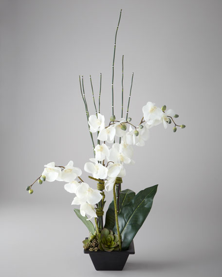 Faux Phaleonopsis Orchid Arrangement in Black Planter
