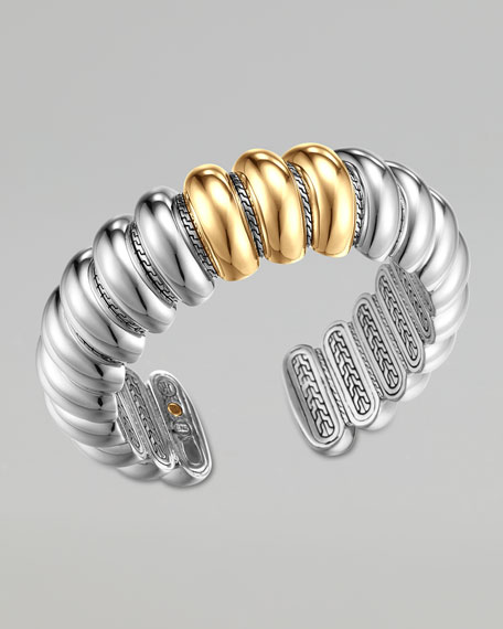 Bedeg Gold & Silver Slim Flex Cuff