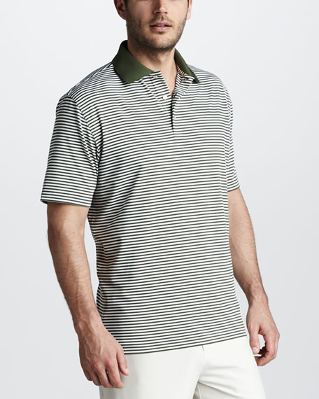 Striped Jersey Polo, Loden