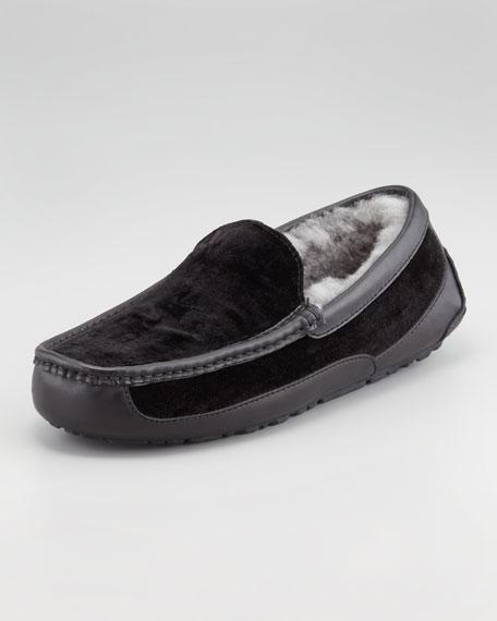 Ascot Velvet  Slipper