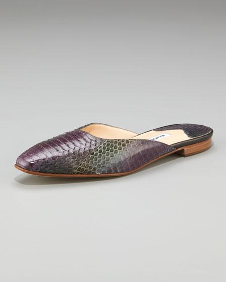 Taza Flat Watersnake Mule, Purple