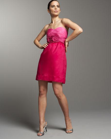 Strapless Ombre Organza Dress