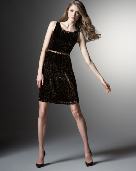 Printed Velvet Belted Dress