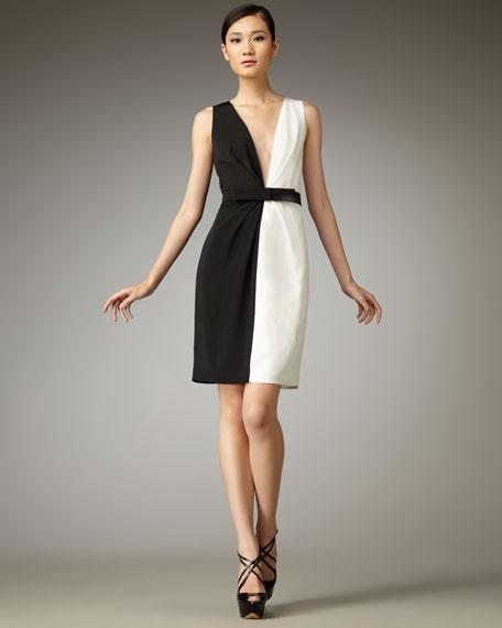 Daisy Two-Tone Dress
