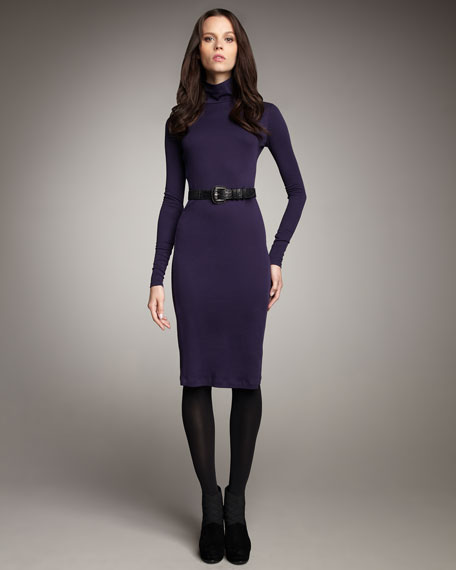 Fitted Turtleneck Dress