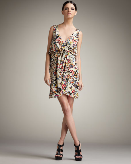 Ashby Printed Dress