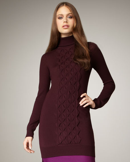 Turtleneck Sweaterdress