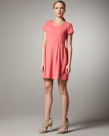 Seamed Sheath Dress