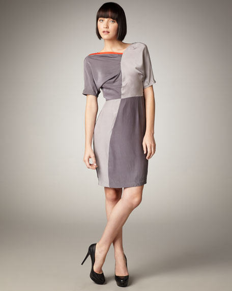 Robin Colorblock Dress