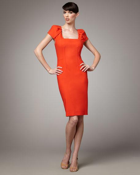 Pleated-Sleeve Dress