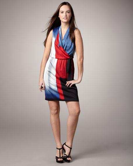 Halley Surplice Dress