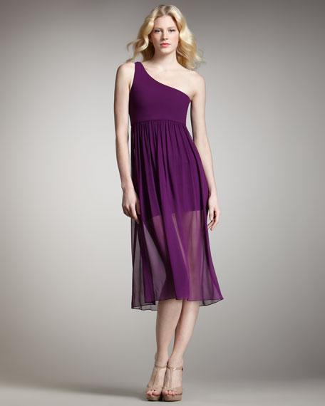 Kalyn Sheer-Skirt Dress