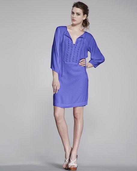 Iliana Embellished Dress