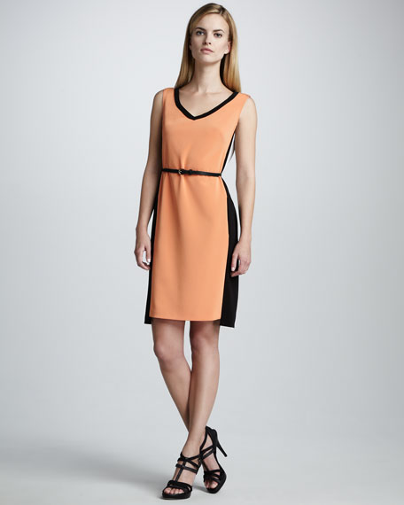Natalie Colorblock Dress