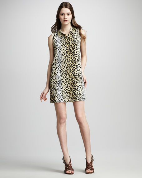 Lucinda Sleeveless Dress