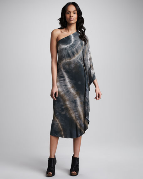 Kimodo Dragon Printed Dress