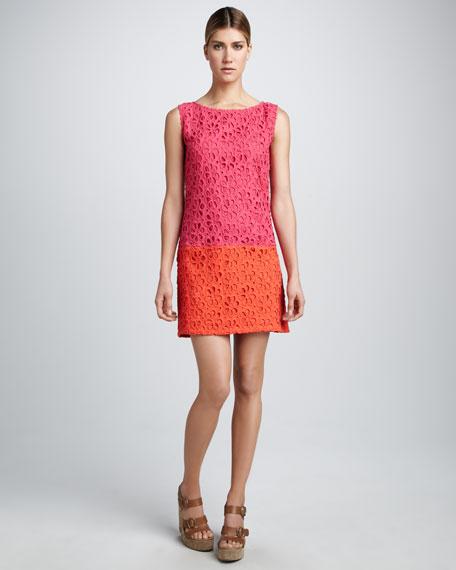 Isla Mod-Lace Colorblock Dress