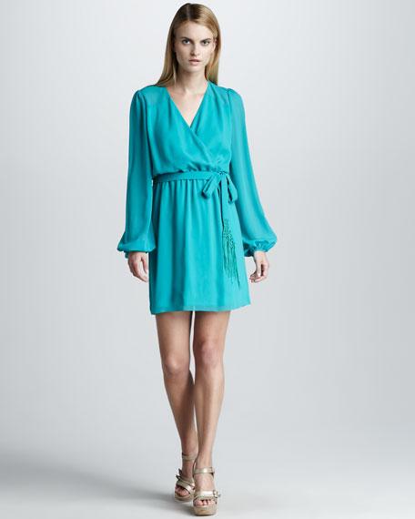 Dress with Bishop Sleeves