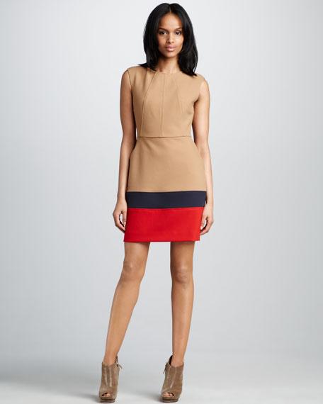 Trina Colorblock Dress