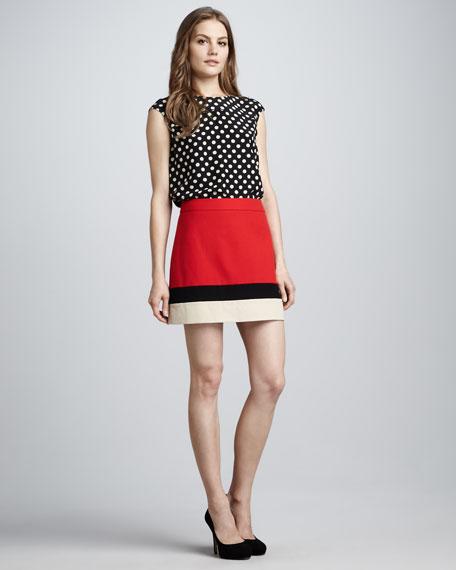 evan a-line colorblock skirt